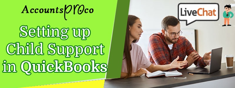 QuickBooks Set Up Child Support